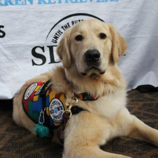 Mental Health News Radio Network Announce Strategic Sponsorship by SDWR to Promote Public Knowledge About Service Dogs